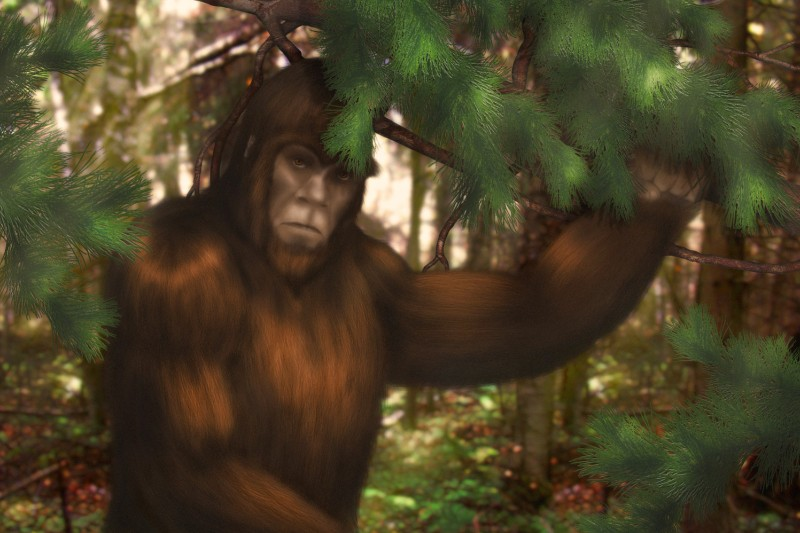 In Search of Sasquatch and Construction Defect Insurance